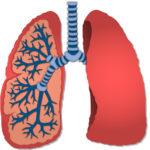 肺のサイン