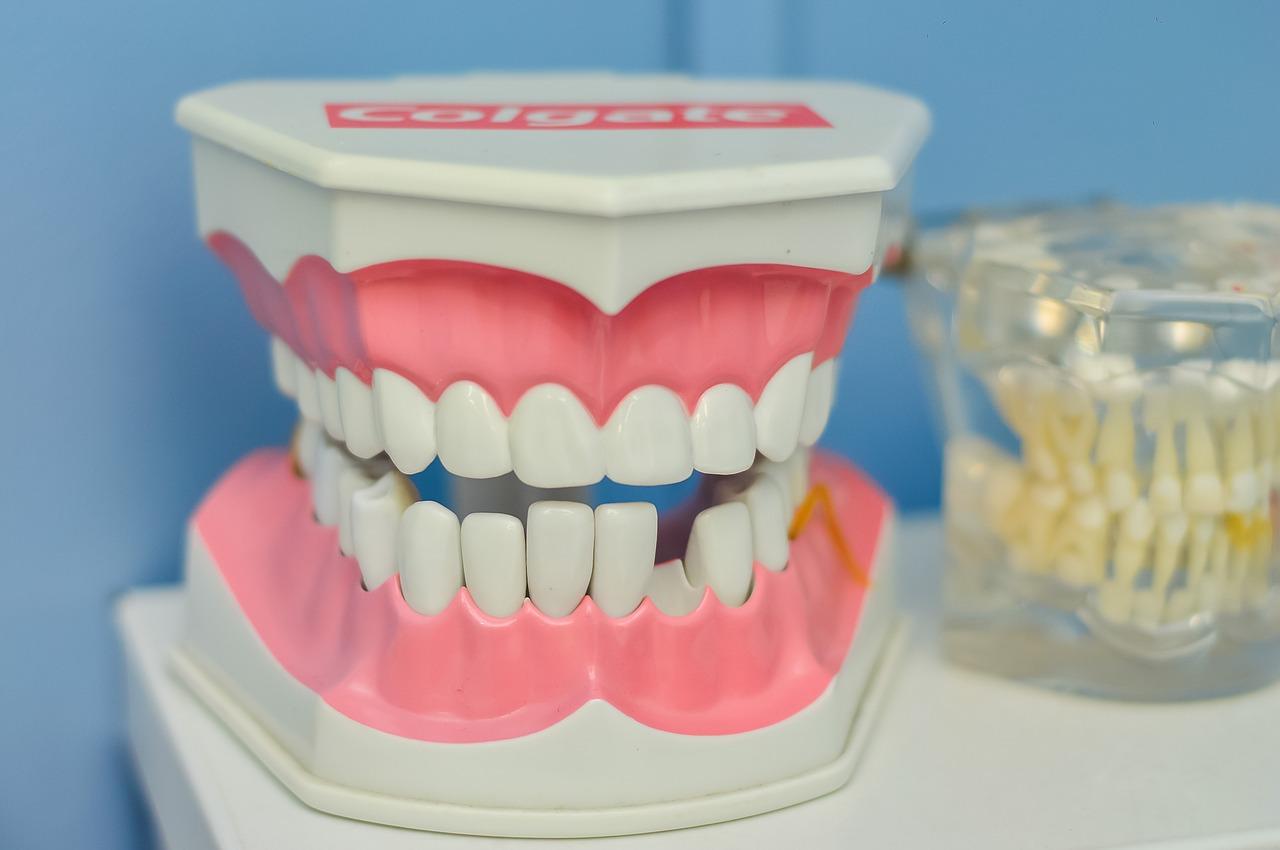 歯茎のサイン