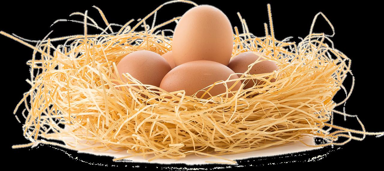 卵巣のサイン